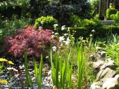 Garten-Duemlen02