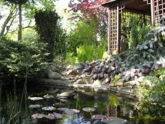 Garten-Duemlen03